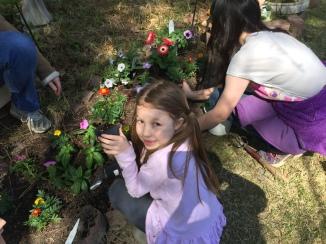Easter Garden Ash