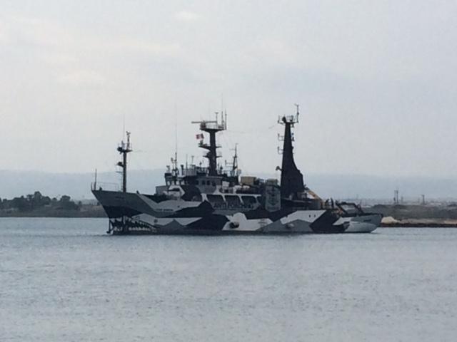 Sea Shepherd 2.jpg
