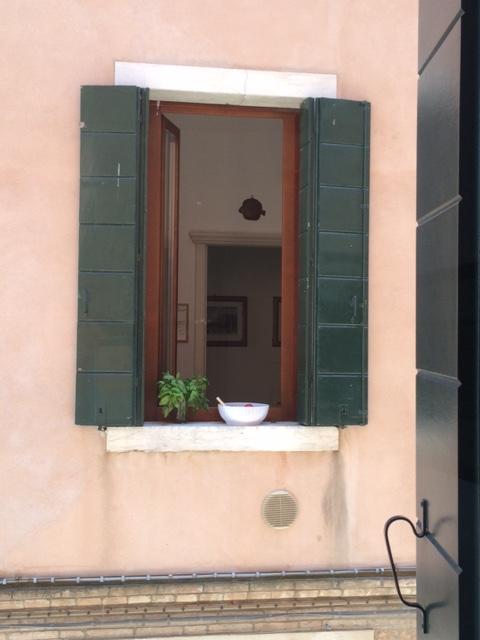 Basilico - Neighbor.jpg