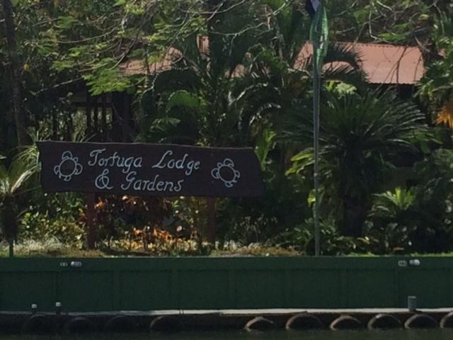 Tortuga Lodge sign.jpg