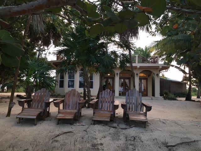 House from Backyard 2.jpg