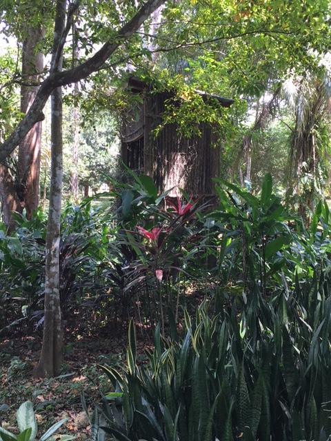 Gardens - Bird Hide