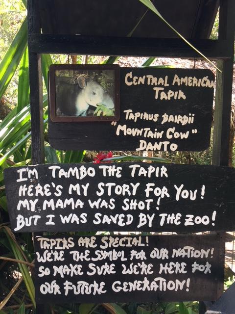 Zoo - Tapir Sign